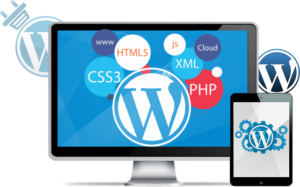 programador wordpress madrid